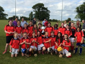 Camogie final 2014