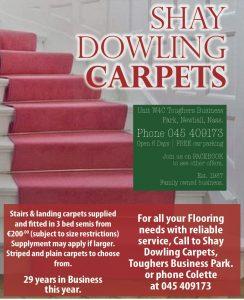 Shay Dowling Carpets 16x4 (2)